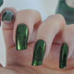 Green-Black-Pine-Trees