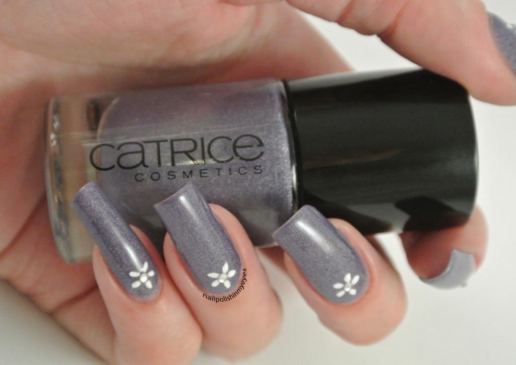 Purple-White-Flower1